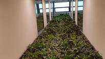 Floorawall auf 5 Etagen im Lichthof integriert